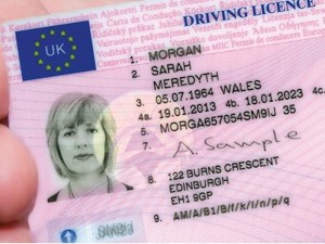 There has been an increase in the volume and frequency of online driving licence data checking by UK fleets