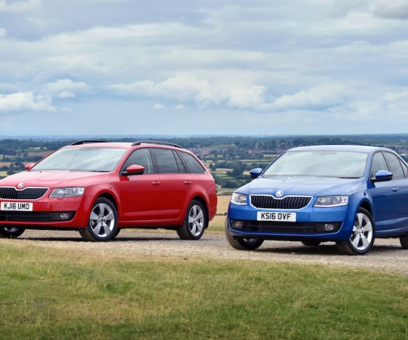 New Octavia grade offers increased value to fleets