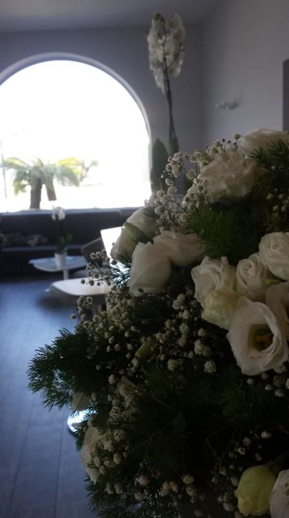 cala-moresca-flowers