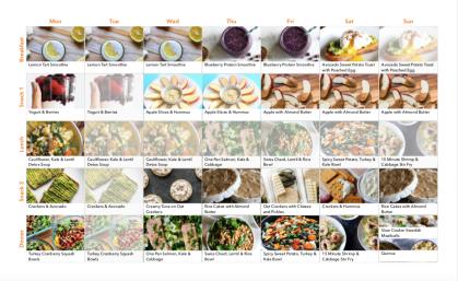 Meal Plan Screen Shot