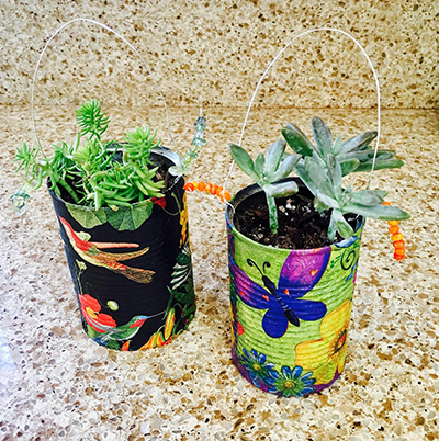 September 23: Make A Succulent Plant Hanger