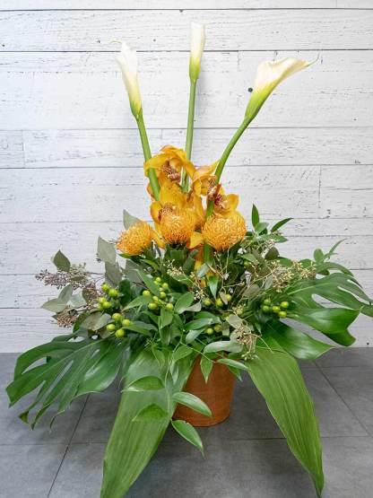 Composition - Callas, orchidées et protea - Fleuriste Coin Vert | Montréal