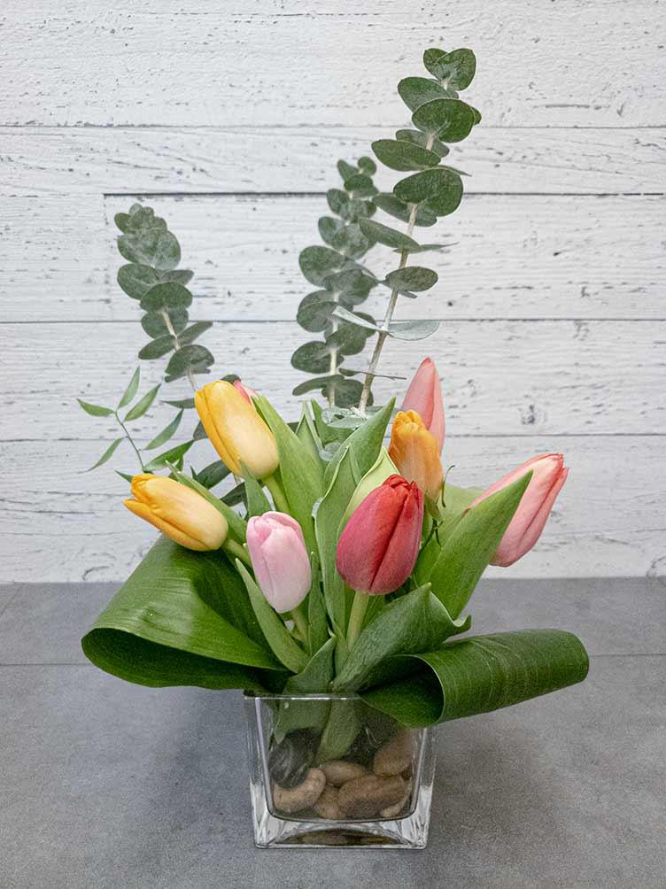 Carré de tulipes - Fleuriste Coin Vert | Montréal