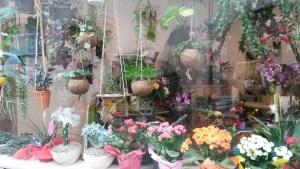Les Jardins Du Cerou Artisan fleuriste à Cordes sur Ciel