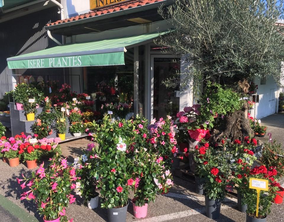 Louer magasin de fleur