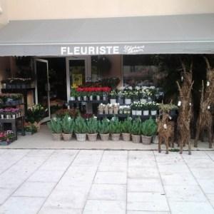Boutique Stéphane Tévenin