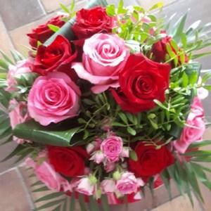 Rose Rosine