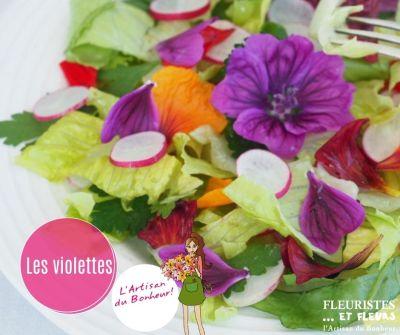 fleurs a manger, violette