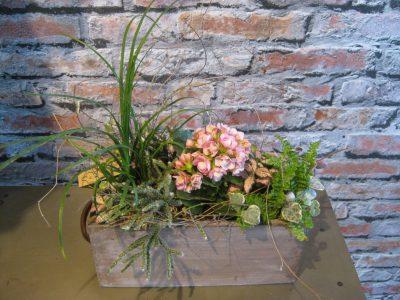 b.cornut_jardin_intérieur_pastel