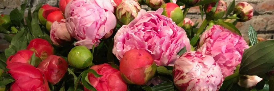 Beau choix de fleurs pour ce mois de mai!