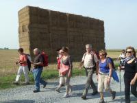 La petite randonnée du 14 septembre à Saint-Aubin-d'Arquenay