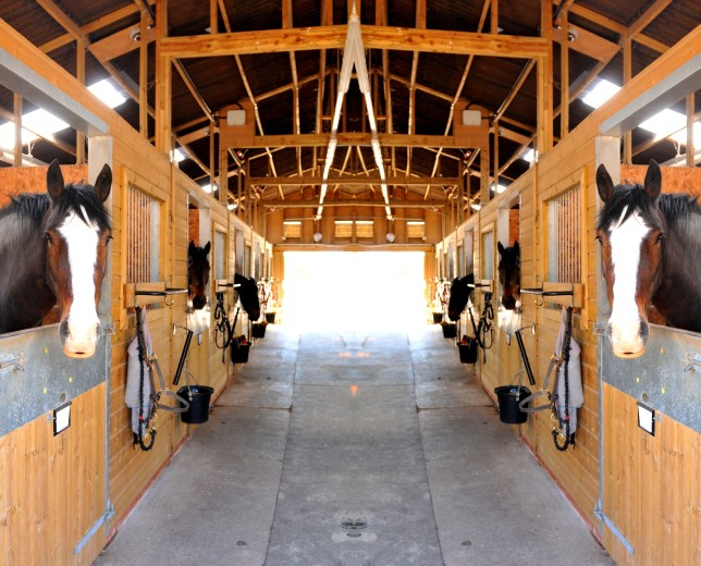 flex-funding provides mortgages for agricultural and equine businesses