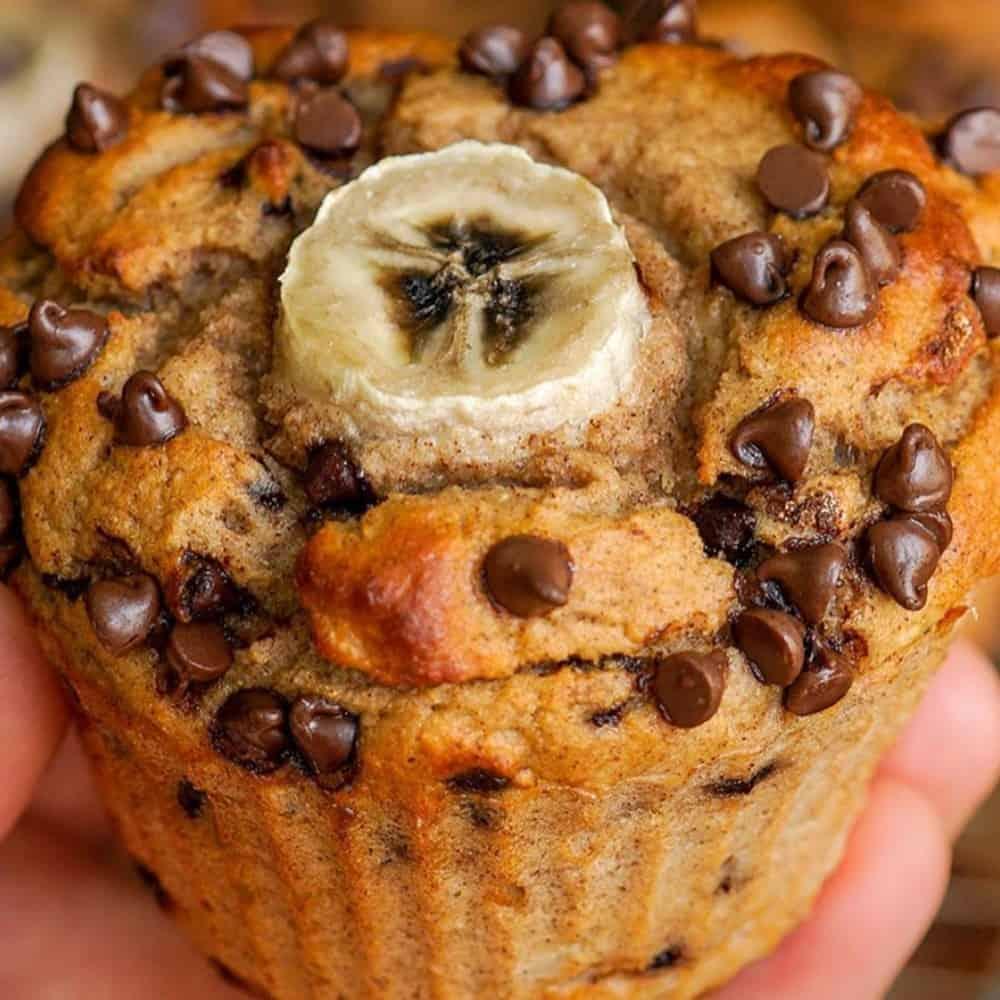 Chocolate Chip Banana Bread Jumbo Protein Muffins Recipe