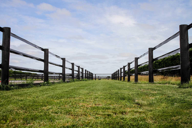 flexi-horse-fencing-09
