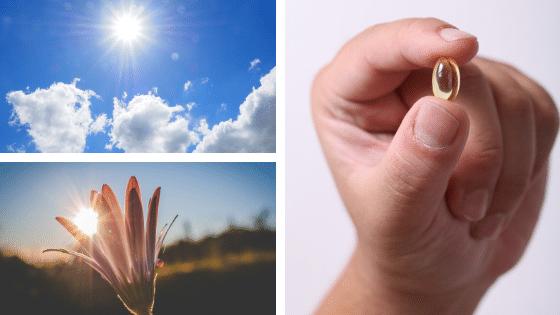 Alimentation et santé : la vitamine D