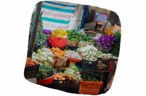 Le marché : un bon endroit pour trouver de bons produits frais