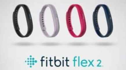 fitbit-flex-2-reviews