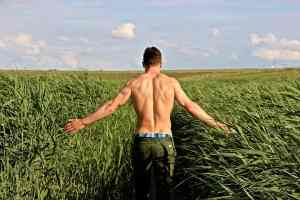 a muscular man walks through a corn field