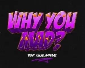 DJ Zan D Why You Mad Ft Gigi Lamayne Mp3 Download