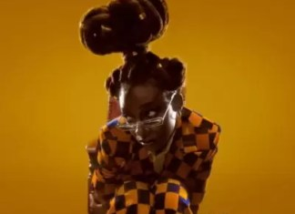 Little Simz Protect My Energy Mp3Download
