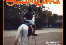 Burna boy steel and copper ep
