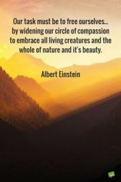 5449efcf40469cab7370c2e06b621cfd--most-inspiring-quotes-inspirational