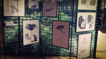 Exposition Gradignan, dessins de Ben Basso (Photo : Dominique Clère) - Flibusk