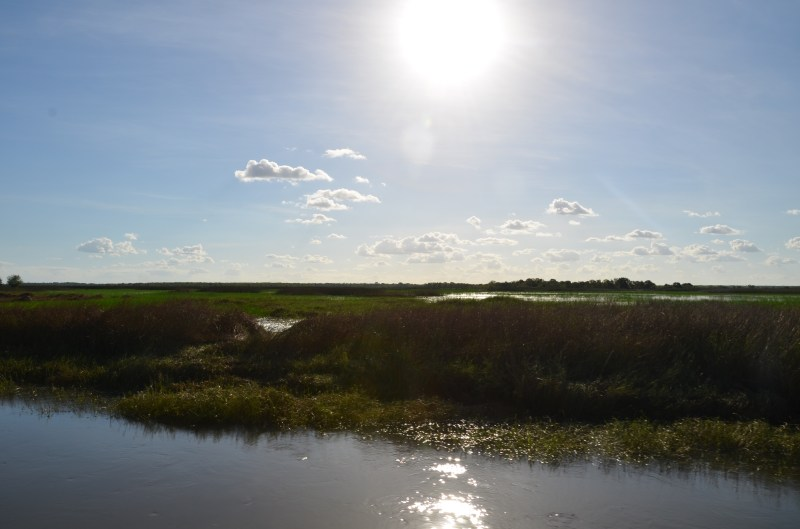 Beautiful Kakadu wetlands