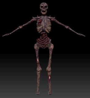 skeletoncolor_front1