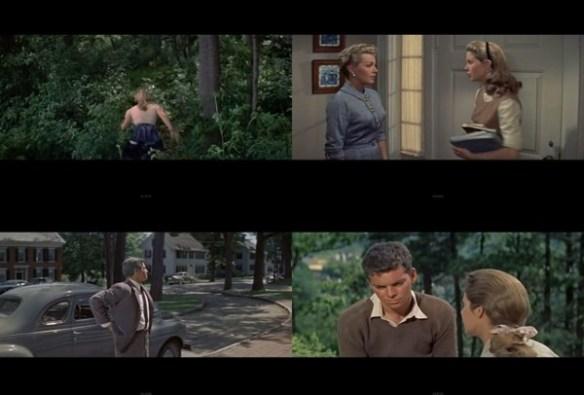 Peyton Place (1957)1