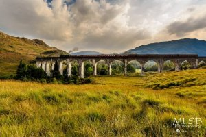 Harry-Potter-Train