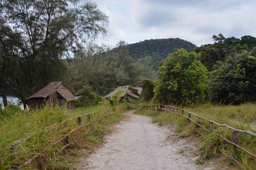 pathway to bungalow, jungle primitive