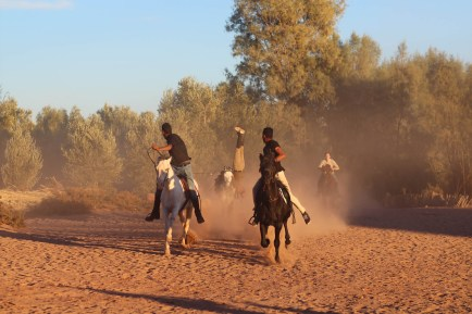 Horse Tricks in AIt Ben Haddou