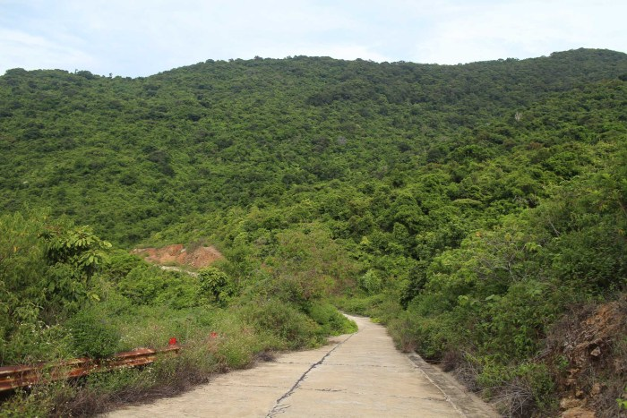 Riding through the forest in Danang