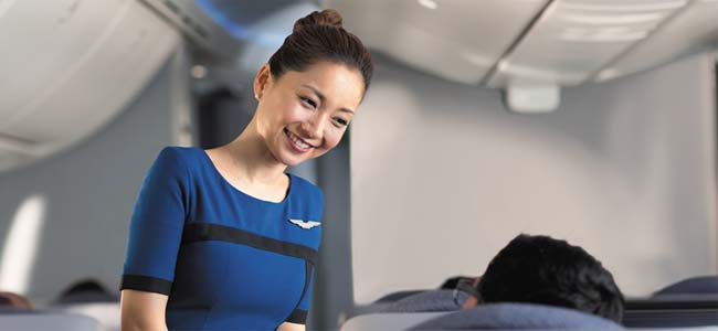 United Airlines Flight Attendant - 60 Interview Questions for United Jobs