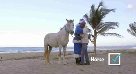 WestJet Horse