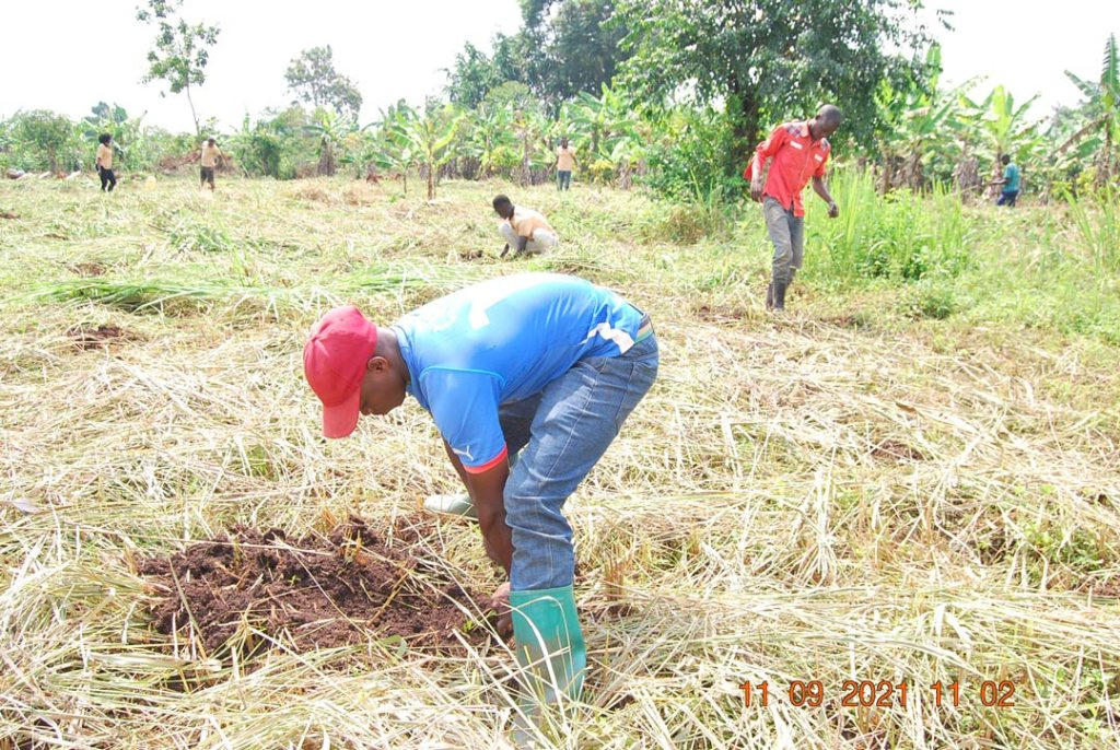 Mr. Ssemwanga and the FFP team fully immersed in the tree planting activity