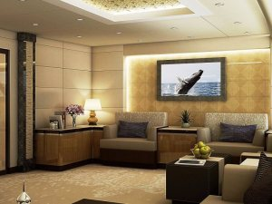 Boeing Private VIP Jet
