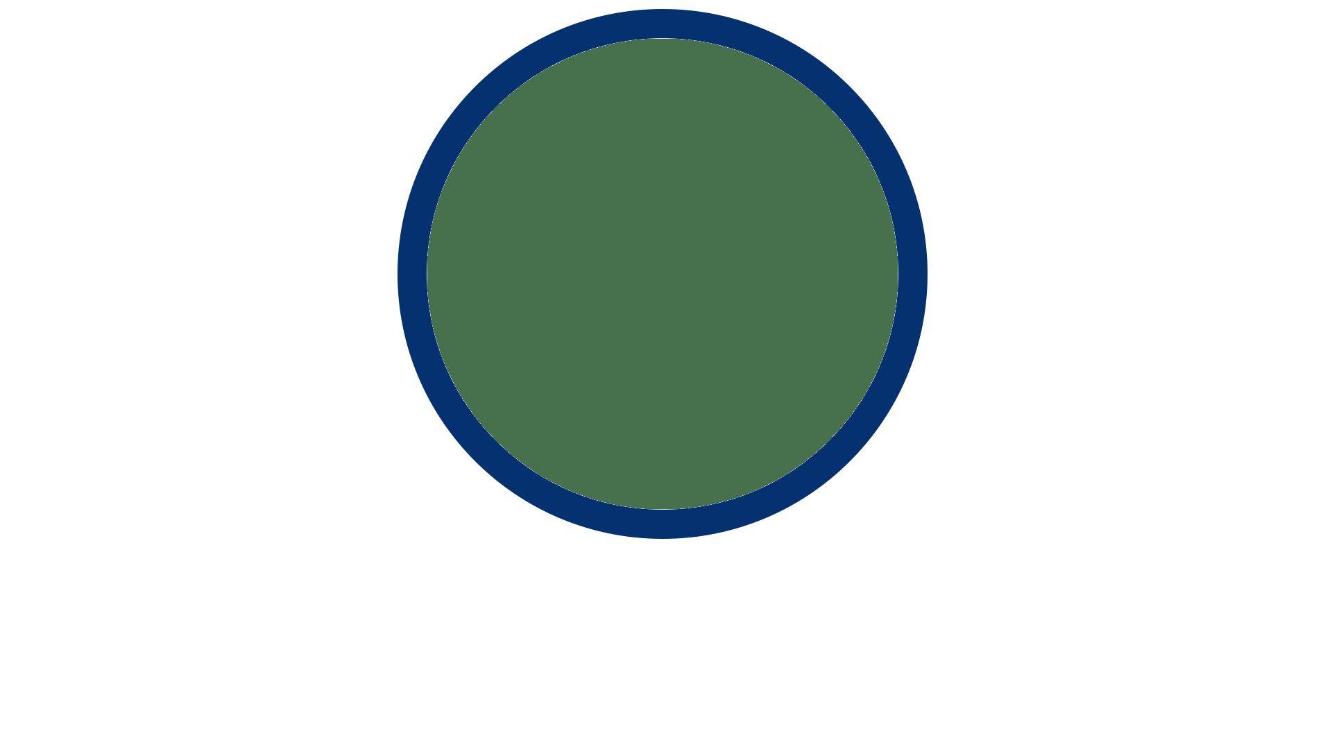 Home Slide Circle