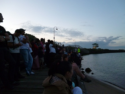 It Does Become Quite Busy On A Saturday Night as everyone looks for the St Kilda penguins