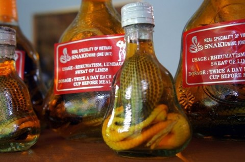 Snake wine is a very strange souvenir