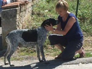 Dogs From Italy – A Stray Story About Cassie