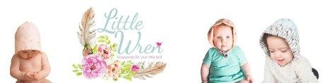 Little Wren