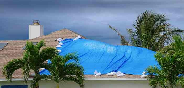 Blue tarp on roof after hurricane damage.
