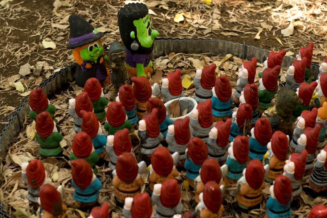 gnome (1 of 1)-14
