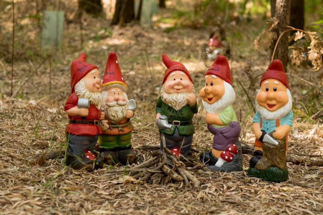gnome (1 of 1)-19