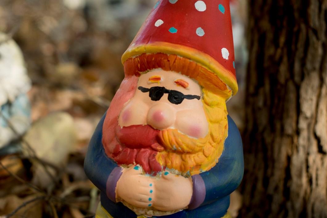 gnome (1 of 1)-20
