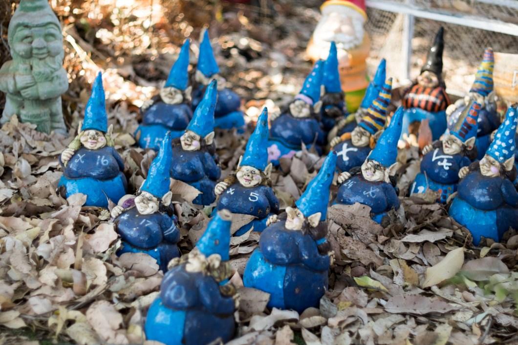 gnome (1 of 1)-3