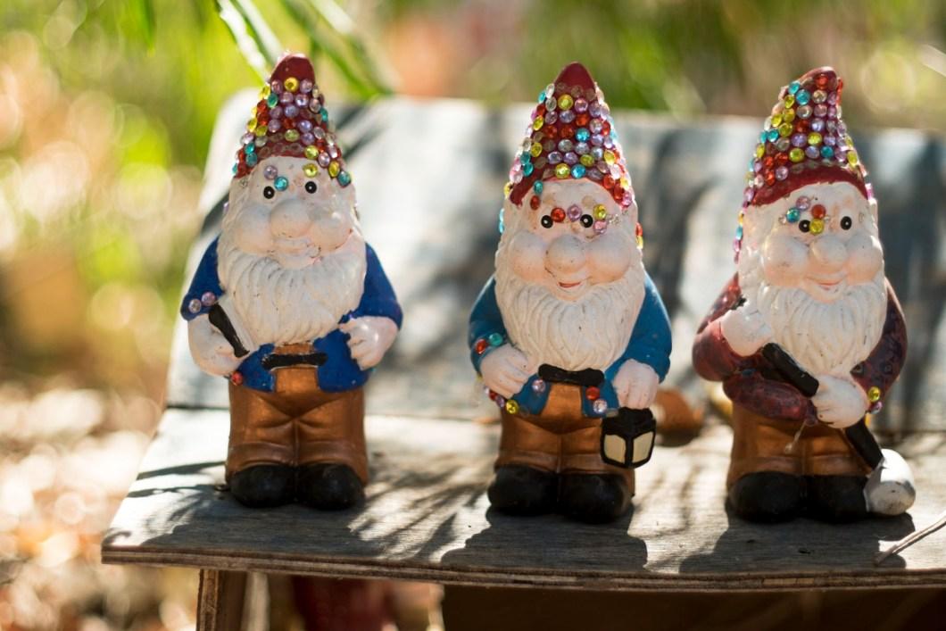 gnome (1 of 1)-9