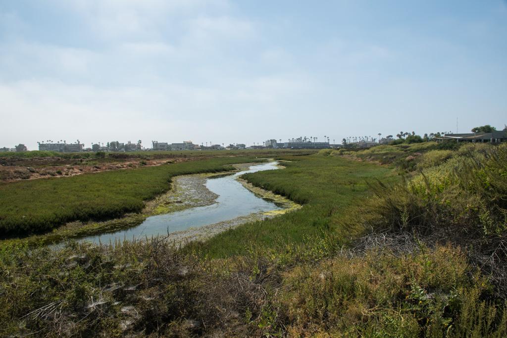 River passing the Tijuana Estuary visitor center